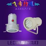 BSD96,LED防爆窥视孔灯,容器防爆照明