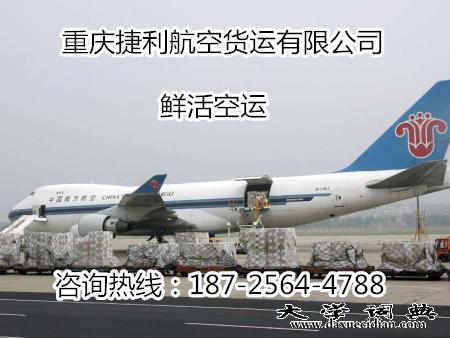 重庆鲜活空运