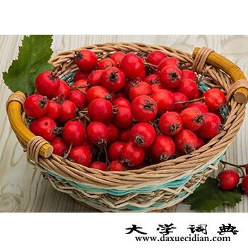 安徽山楂果品,价格适中的山楂果品批发市场推荐
