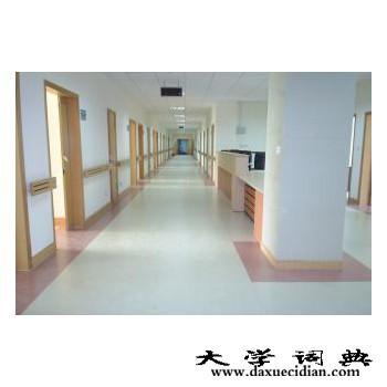 北京专业的pvc地板厂家-家装pvc地板