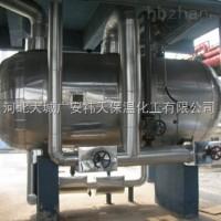 高温进料泵