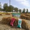 想买好的生物有机肥就到桓仁鸿宇牧业 ,有机肥哪里有卖