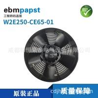 W2E250-CE65-01德国ebm安迅能1500用风扇