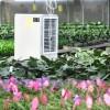 花棚暖风机专卖-潍坊超实惠的暖风机出售
