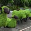 动物绿雕厂家-哪家制作的动物绿雕精美