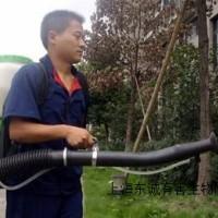 供应上海灭鼠公司多少钱东诚供