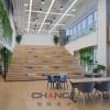 园区改造效果-上海市园区改造