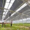 太阳能发电温室建设-高质量的太阳能发电温室大棚建设