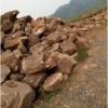 沈阳风景石-可靠的风景石批发价格