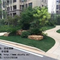 供应-上海-工厂园林绿化工程-服务-直销-泽珐供