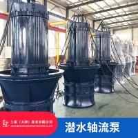 调水工程QZB潜水轴流泵厂家指导选型
