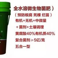 攀枝花颗粒菌肥厂家 西昌微生物菌肥 攀枝花颗粒菌肥厂家