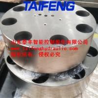 泰丰二通插装阀盖板TLFA80WEZA-7X