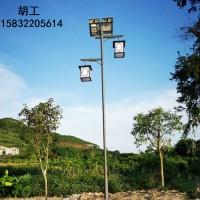 石家庄新农村建设太阳能路灯装哪种好,怎么卖