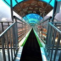 景区飞天魔毯造价 适合四季旅游开发网红项目