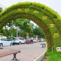 仿真植物绿雕设计定制厂家多少钱价格表报价单