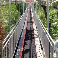 泰安景区魔毯设计方面巧妙 输送带设备生产诺泰克
