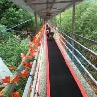 荆门景区魔毯颜色单调可定制 飞天魔毯设备安装诺泰克厂商