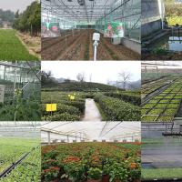 智慧数字农业专业解决方案 现代农业物联网管理系统