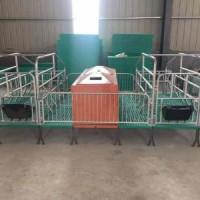 仔猪复合保育床、高培产仔床、高培分娩床