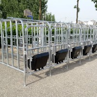 不锈钢围栏产床