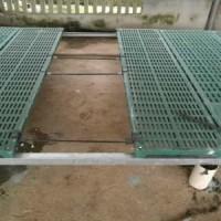 自动干湿饲料器设备