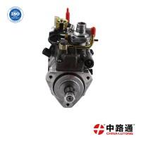 燃油泵柴油发动机油泵22100-1C050