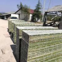 羊床漏粪板竹子羊床