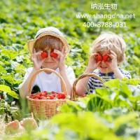 辽宁海城市孕妈做无创DNA几天出结果024-23506906