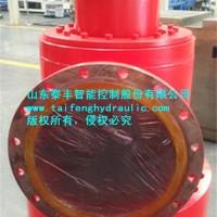 供应厂家泰丰充液阀CF1-H300B