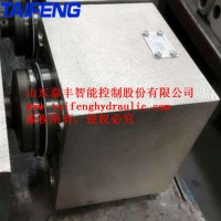 供应厂家泰丰TCF1-H63B型充液阀