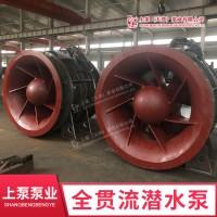 广西全贯流潜水电泵