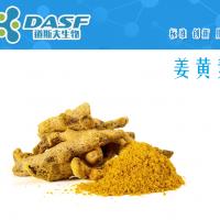 姜黄素 458-37-7