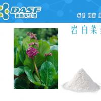 岩白菜素477-90-7