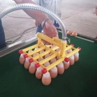 保洁蛋可漏吸单头码蛋器